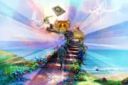 راه سعادت از دیدگاه امام علی علیه السلام
